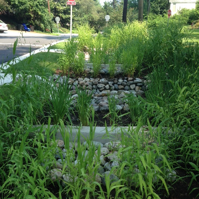 Stormwater ladder bioswale in Sligo Park Hills