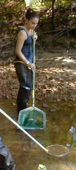 Cleaning Silgo Creek