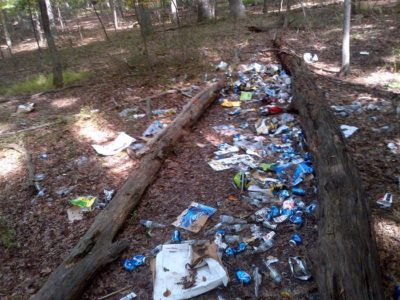 Litter covering the ground between two logs in Sligo Creek park.