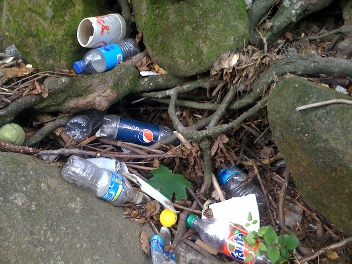 Styrofoam and plastic bottles are a large percentage of trash found in Section 2.