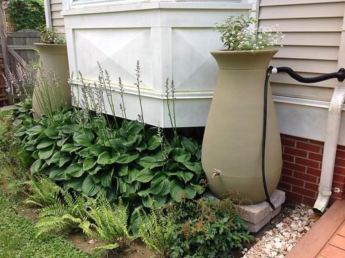 RainScapes Rain Barrel