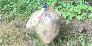 A bag of trash collected beween Piney Branch and Wayne.