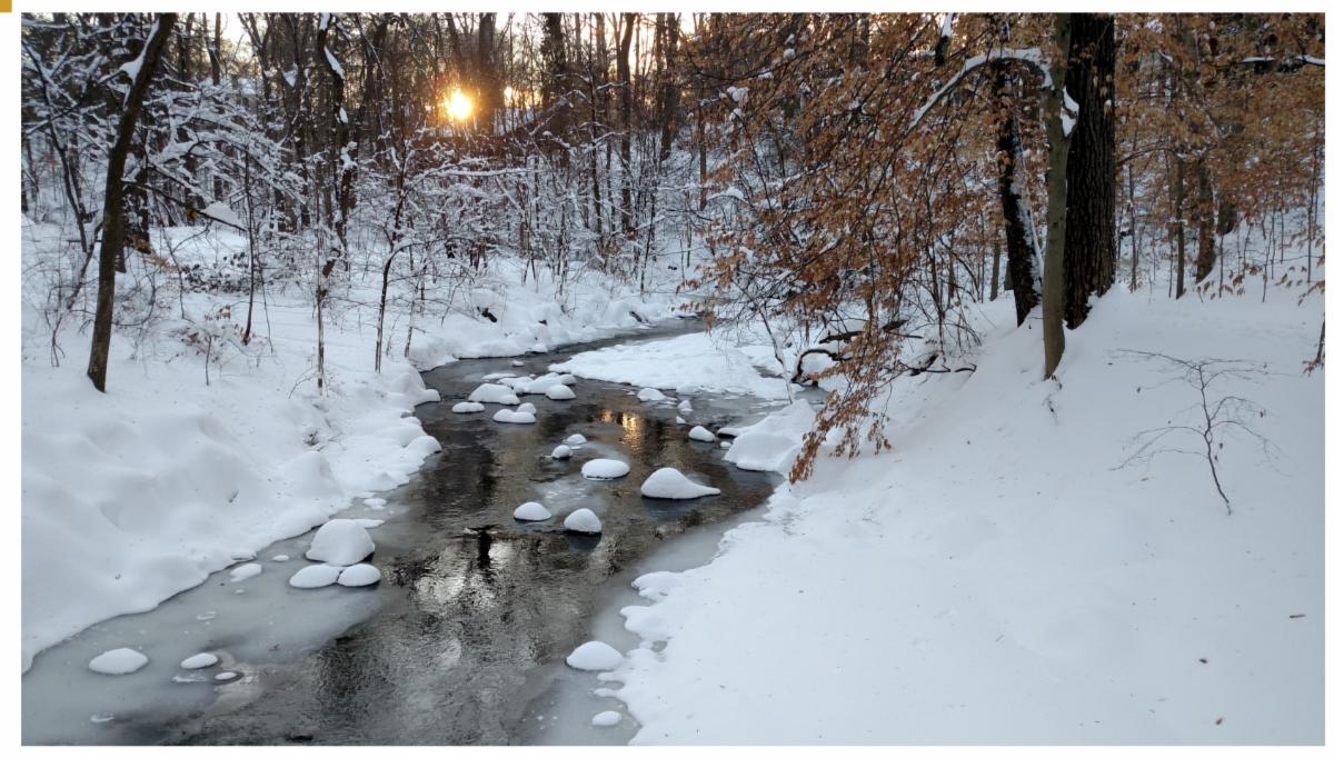 Snowy Sligo Creek at sunset by Michael Wilpers