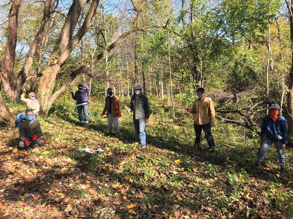 Weed Warriors tackling invasives in a section of Sligo Creek parkland.
