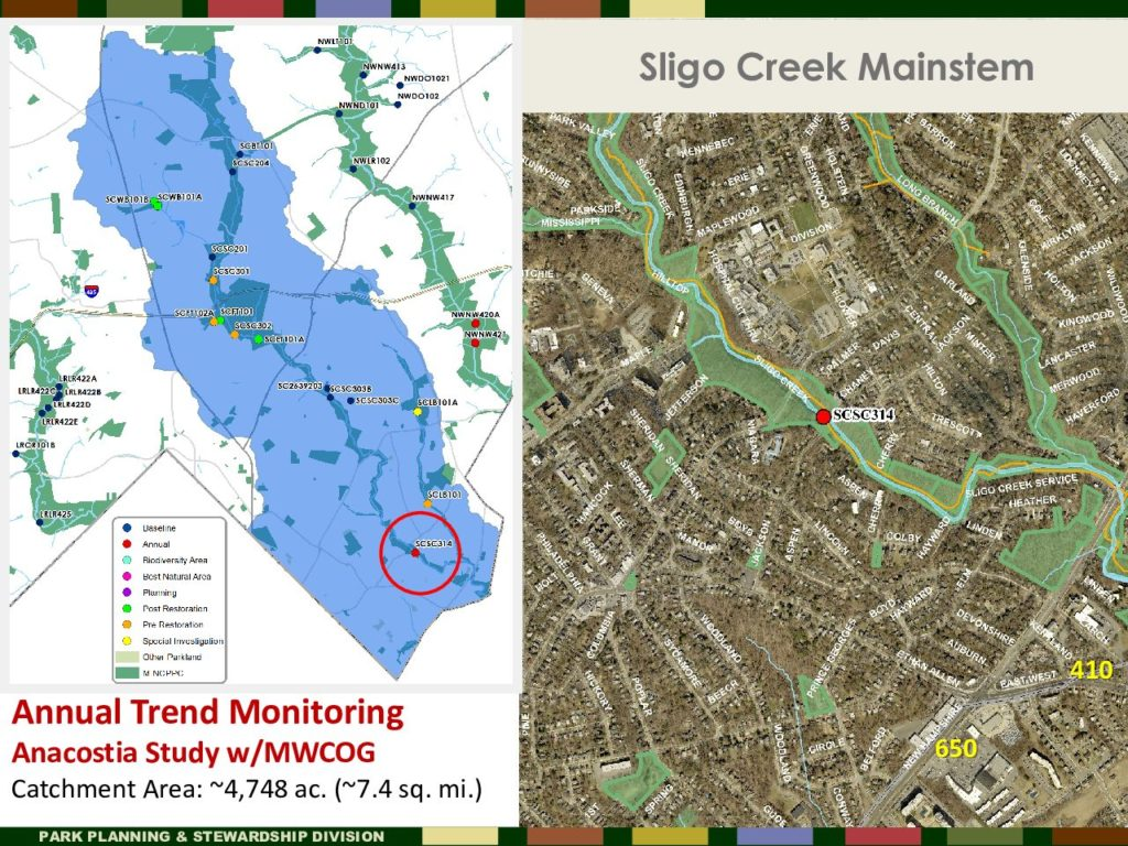 Sligo Creek Mainstem testing location SCSC314 of annual monitoring of fish species by Montgomery Conty Parks Dept